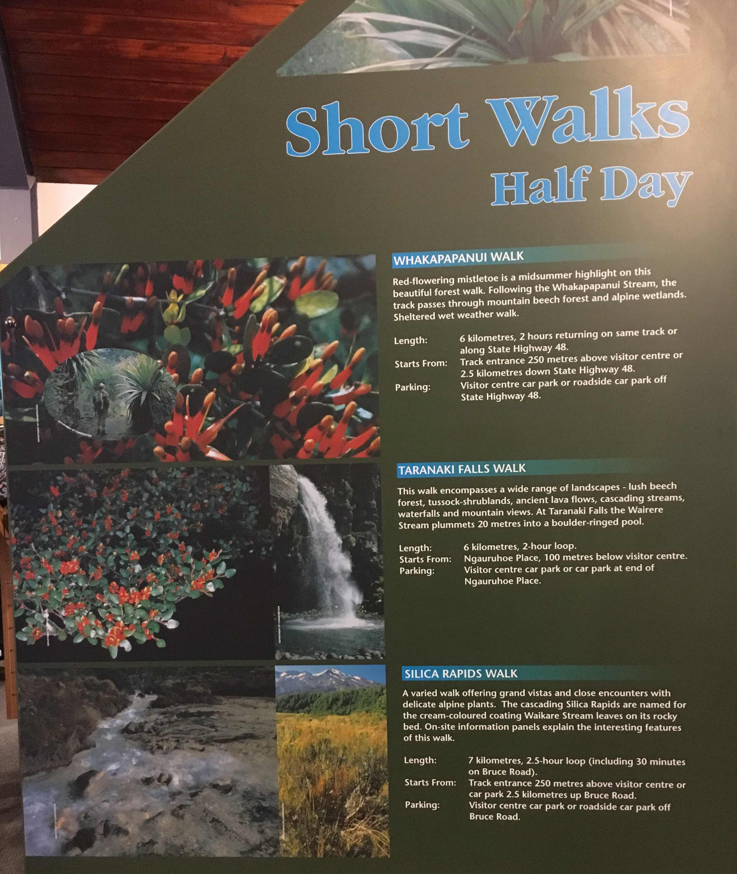 Whakapapa half day walks