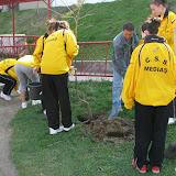 Curăţenia de primăvară 2009 - IMG_2048.jpg