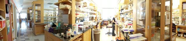 Lab Photos! - DSC00002.JPG