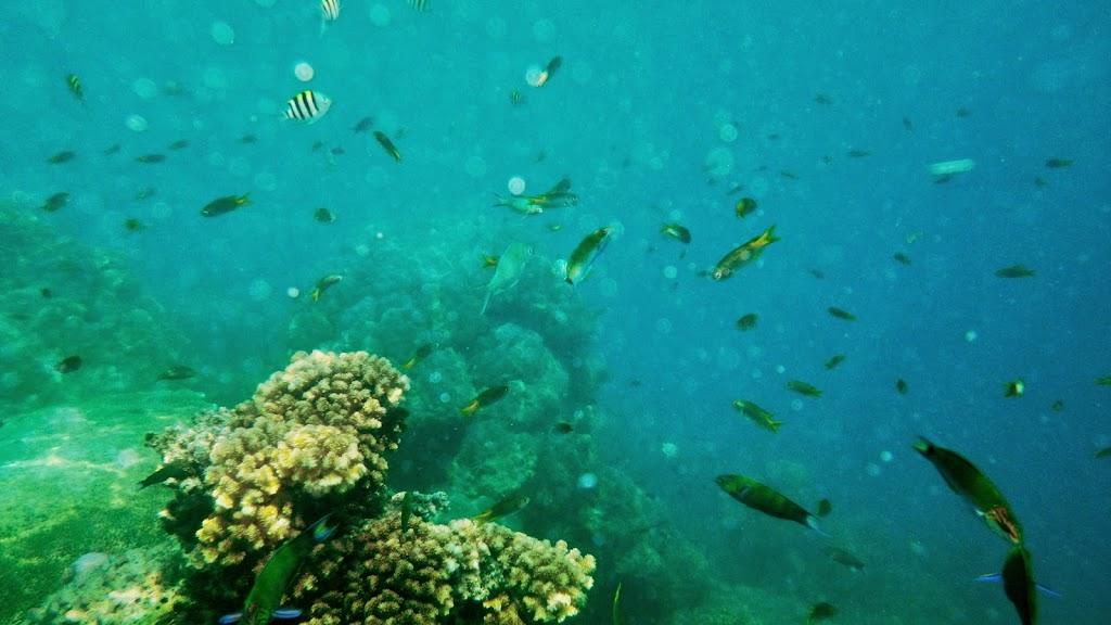 ngebolang-pulau-harapan-5-6-okt-2013-pen-06