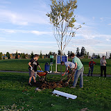 Tree Planting November 2010 - DSC_4541.JPG