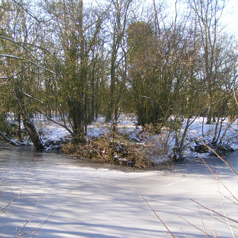 Tattenhoe_12 Frozen Pond.jpg