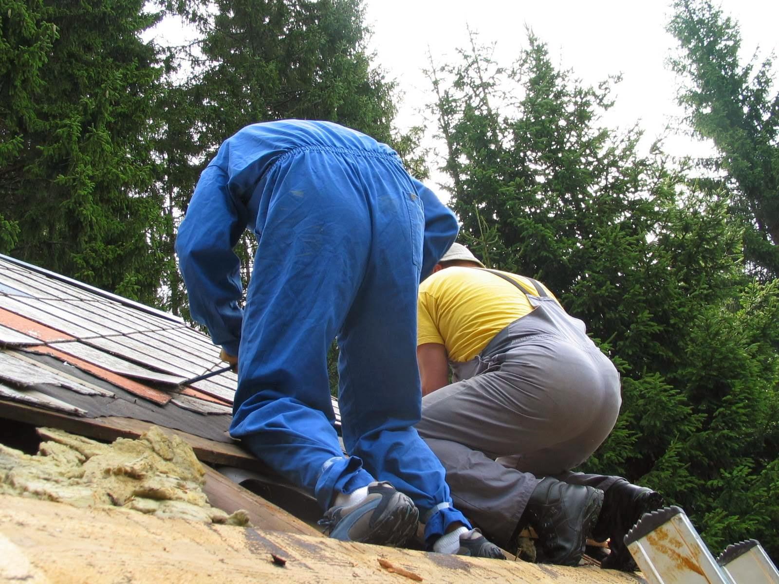 Delovna akcija - Streha, Črni dol 2006 - streha%2B029.jpg