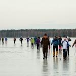 2014.02.24 Elamusretke paraad Koitjärve rabas - AS20140224KOITJARVE_042S.JPG