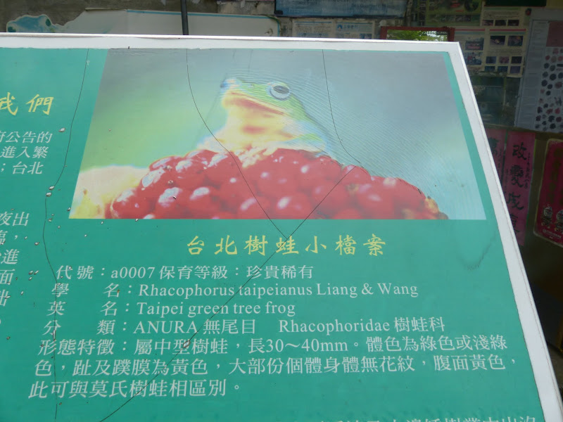 Taipei. Le parc Sanli et un évenement contre les mines dans le monde - mines%2B017.JPG