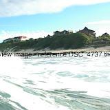 DSC_4737.thumb.jpg