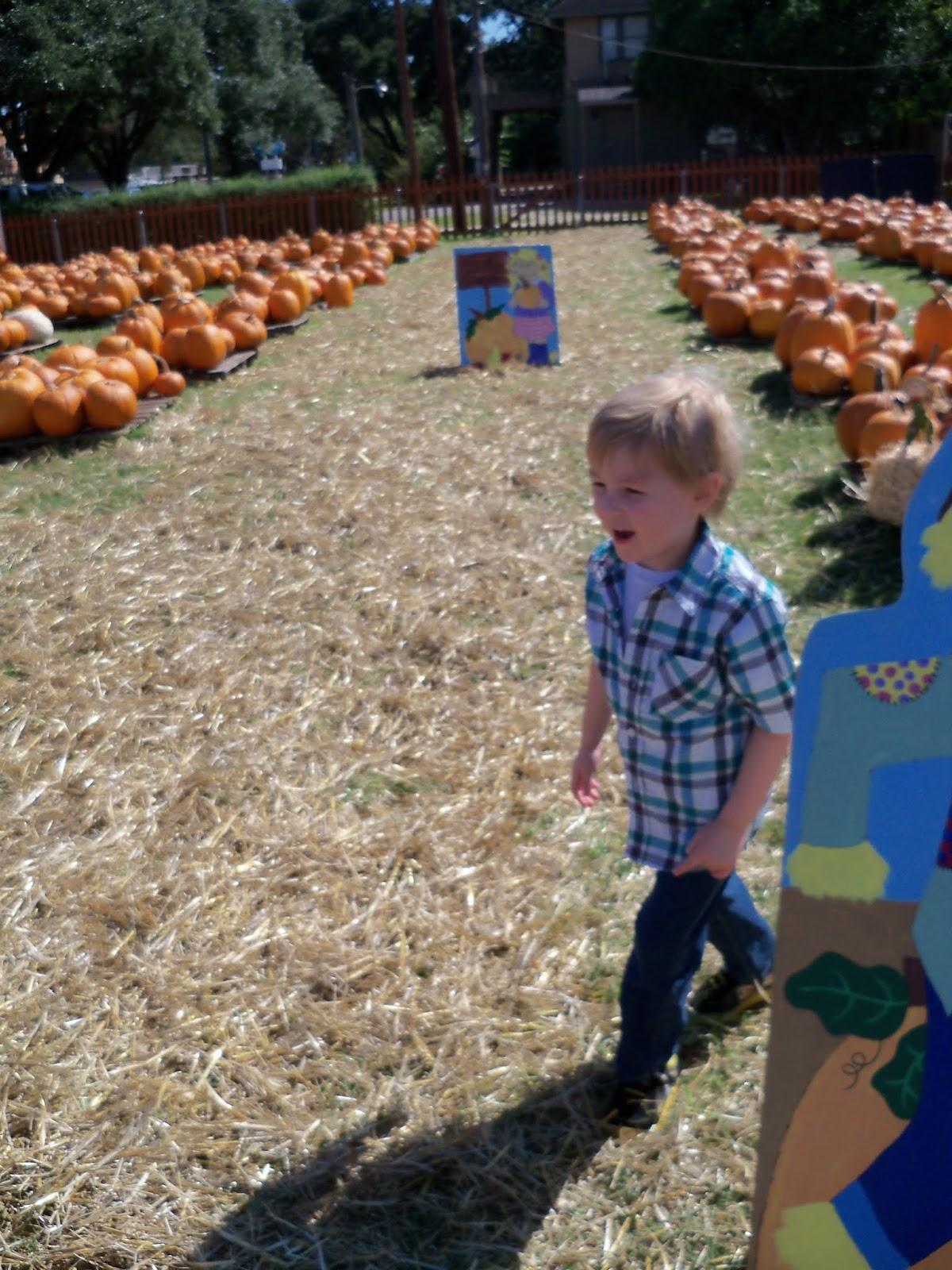 Pumpkin Patch 2015 - 100_0390.JPG