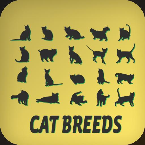 猫品种 娛樂 App LOGO-APP試玩