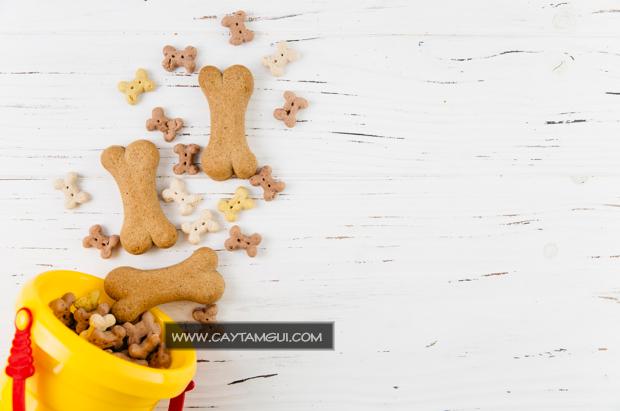 Thức ăn cho chó và những điều cần biết