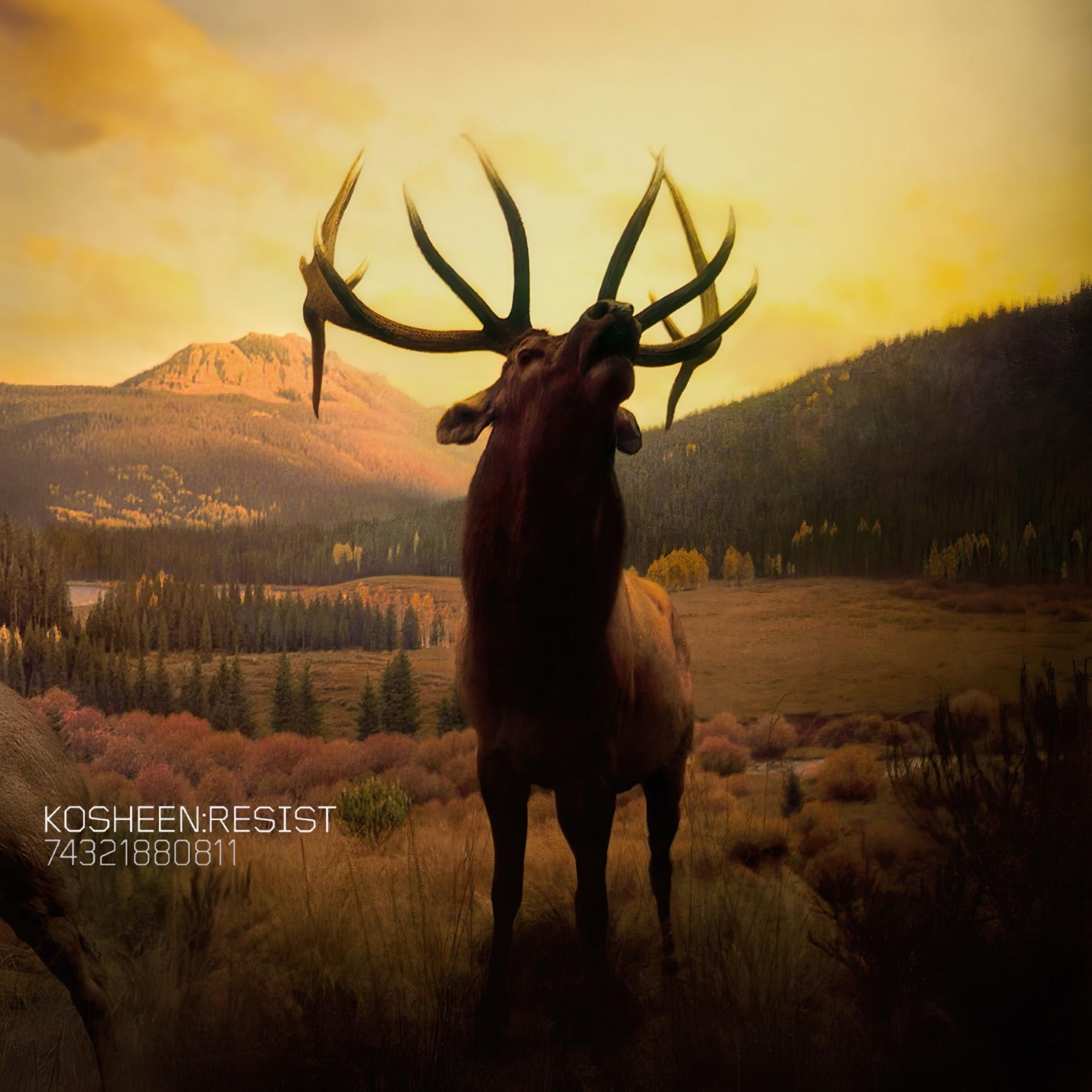 Album Artist: Kosheen / Album Title: Resist