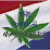 The Dutch Marketers's profile photo
