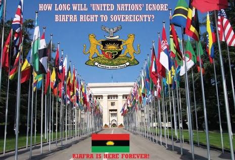 IPOB urges Protesters not to give up