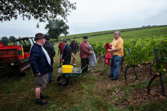 2013 vendanges du chardonnay - 2013%2B09%2B28%2BGuimbelot%2Bvendanges%2Bdu%2BChardonnay%2B157.jpg