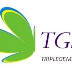 triplegemsoft