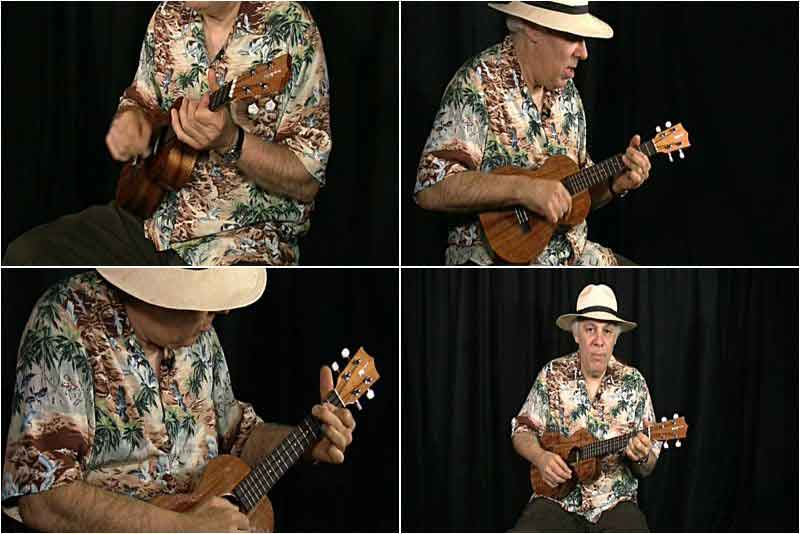 Fred Sokolow - Complete Intermediate Ukulele Guide