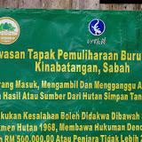 Pancarte au début du chemin de Pangi. Sukau (Sabah), 7 août 2011. Photo : J.-M. Gayman