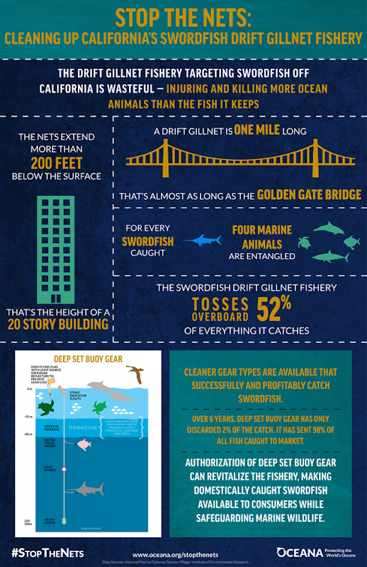 'Stop The Nets' infographic from Oceana shows the enormous bycatch from drift nets off the California coast. Graphic: Oceana