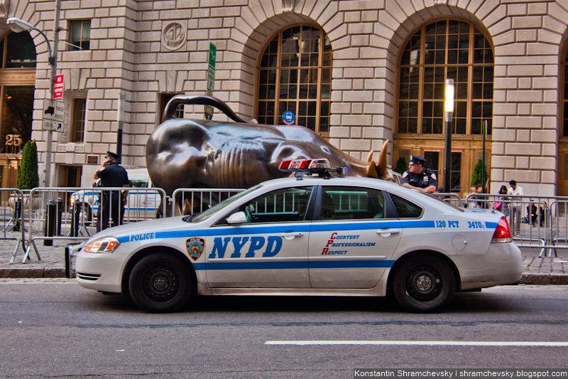 USA New York Manhattan Occupy Wall Street Bull Cops США Нью Йорк Полиция Протест Уолл Стрит Бык