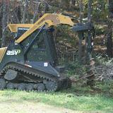 Guilford Salt Meadows Sanctuary Planting - 299062_2078606493742_1502411954_31695570_1281551431_n.jpg