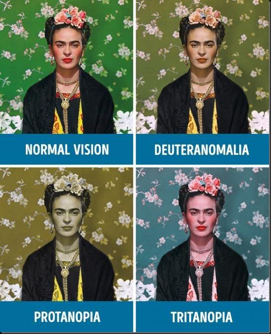 penglihatan mata normal dan buta warna
