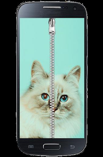 cool cat Zipper Screen Lock