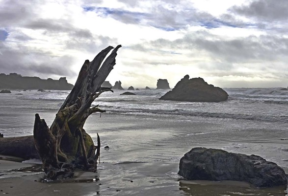 Bandon Beach Feb17