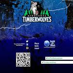 Minnesota Timberwolves.jpg