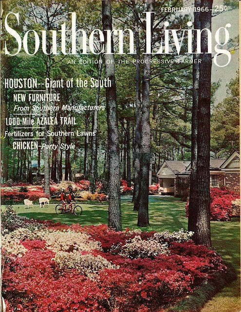 Southern Living Magazine | Premier Edition