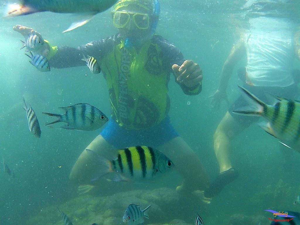 family trip pulau pari 140716 GoPro 54