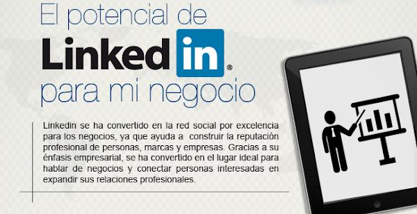 El potencial de LinkedIn para tu Negocio (infografía)