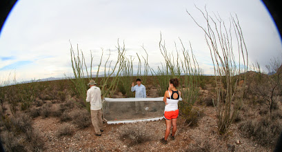 Photo: Setting up the FIT at the Barrel Cactus site.