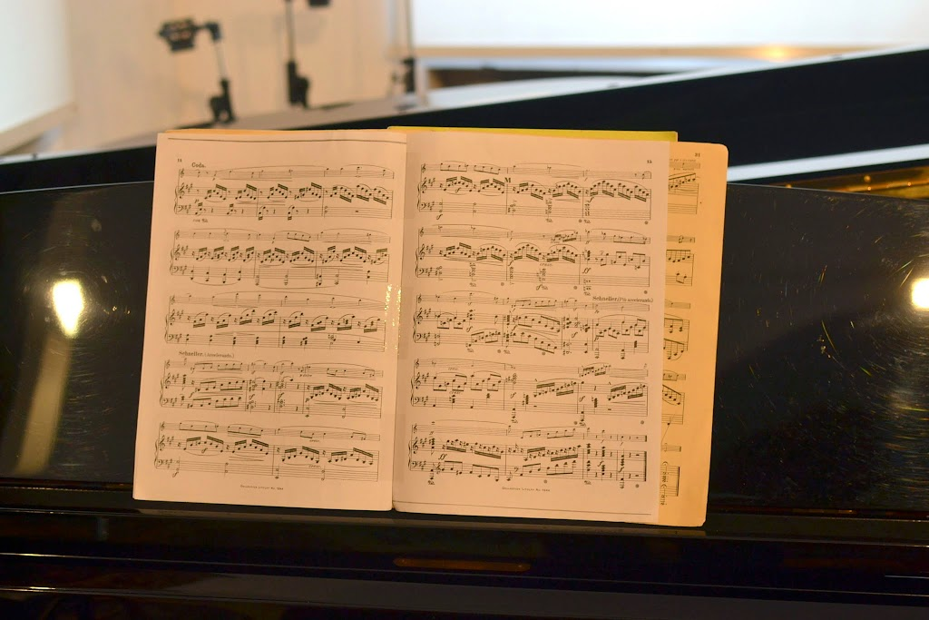 Violoncelistul Dan Cavassi - (269)
