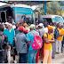 Choferes deciden volver a transportar haitianos, pero solo los que estén legales