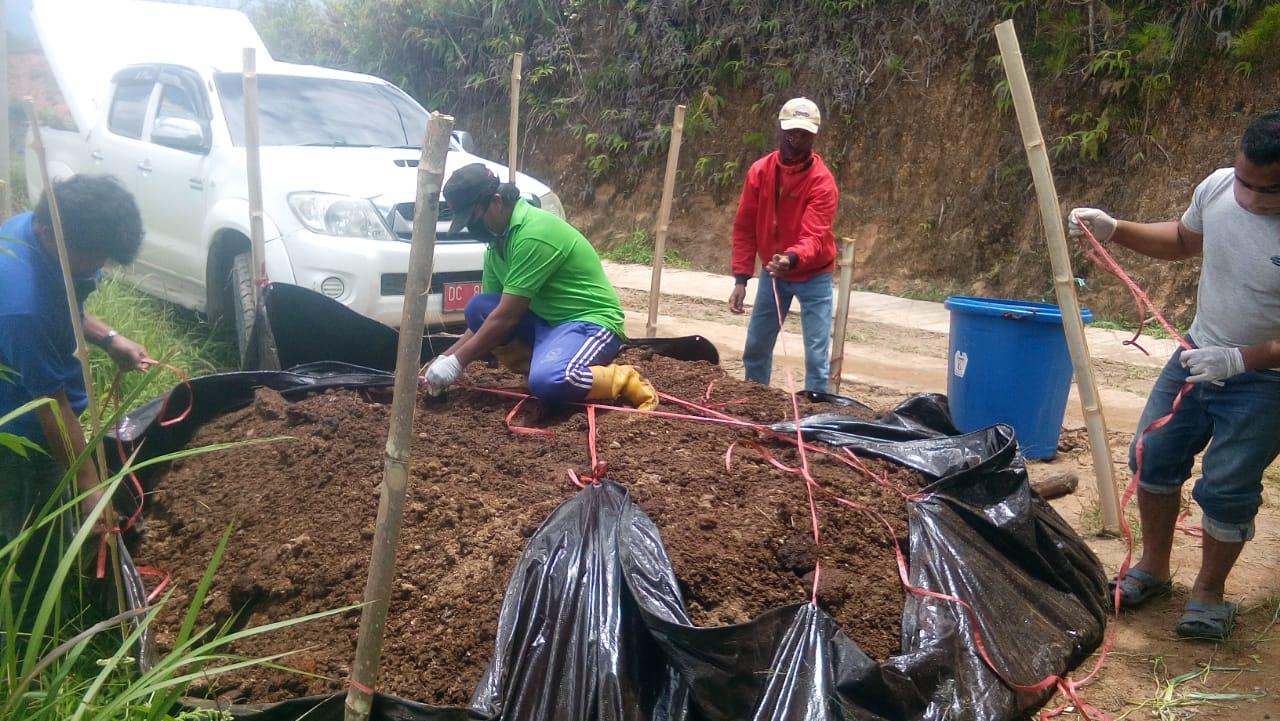 Tingkatkan Hasil Produksi, P4S Sahabat Petani Gunakan Kompos Untuk Tanaman Kentang