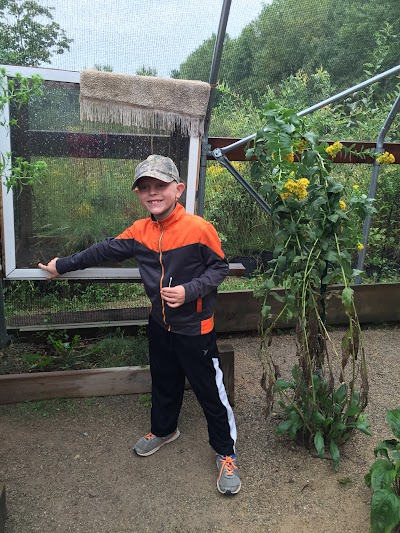 Butterfly Gardens of WI