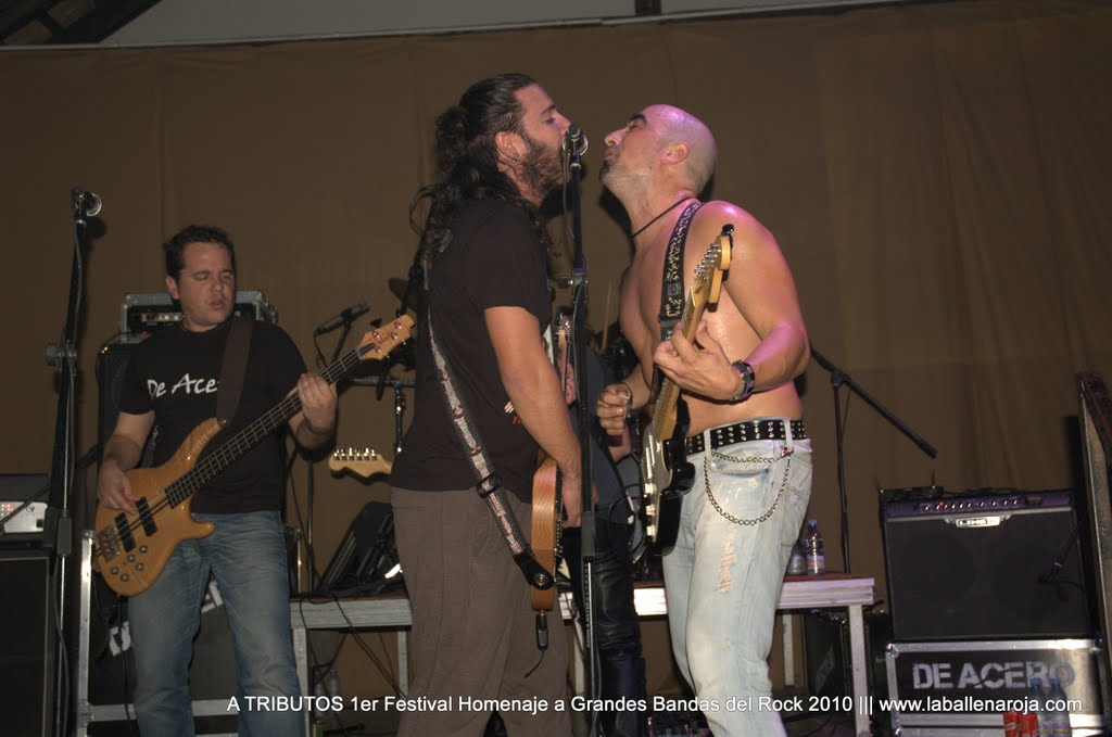 A TRIBUTOS 1er Festival Homenaje a Grandes Bandas del Rock 2010 - DSC_0139.jpg