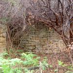 McGaw's Ruins (3736)