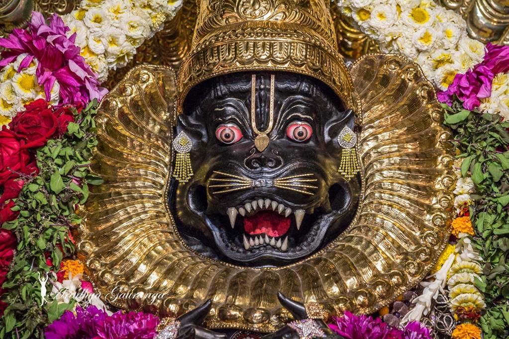 ISKCON Mayapur Deity Darshan 01 Mar 2016 (50)