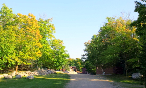 Early fall color on the Maplelag driveway
