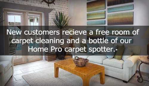 Shoreview Minnesota Carpet Cleaning