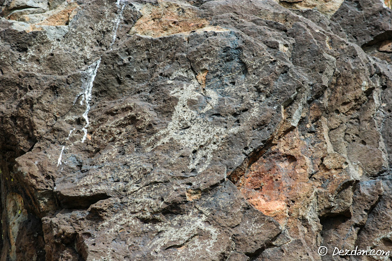A closeup of a bighorn petroglyph.