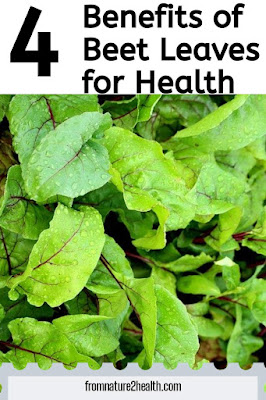 Beet Leaves Maintain eye health, Beet Leaves Reducing the risk of getting sick, Beet Leaves Maintain healthy muscles and nerves, Beet Leaves Helps the process of blood clotting