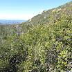 san-juan-trail-IMG_0266.jpg