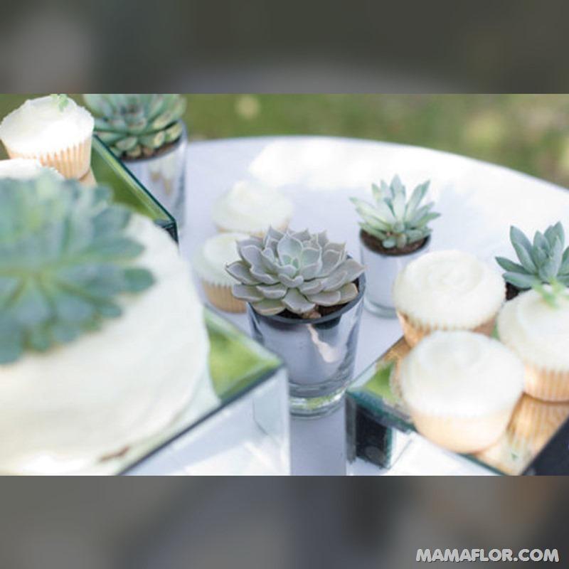 Centros-de-mesa-para-Boda-con-cactus-y-suculentas---16