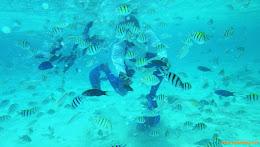 ngebolang-pulau-harapan-singletrip-nov-2013-pen-06