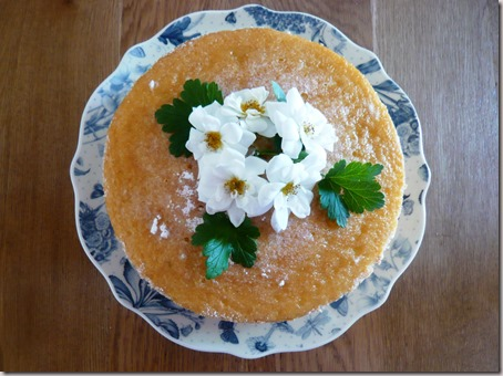 gooseberry and elderflower cake2