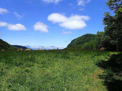 鉱山跡の草原