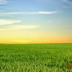 Panorama 020_1280px.jpg