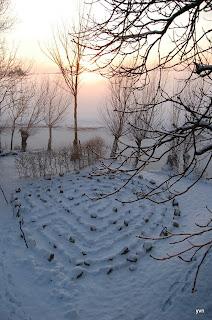 Het kleine Paradijs in de winter