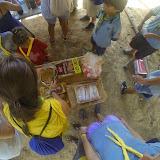 Campaments Estiu Cabanelles 2014 - G0153789.JPG